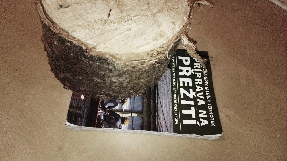 13-kniha-vs-birch-log